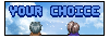 banneryourchoice2mini.png